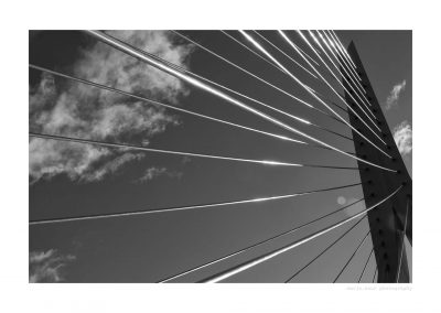 WS-Rotterdam-bnw-06-01