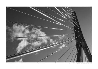 WS-Rotterdam-bnw-06-11